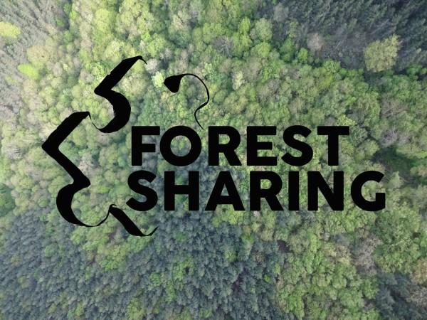 Forest sharing – La piattaforma innovativa che si prende cura del tuo bosco