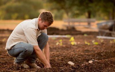 In Abruzzo gli under 35 scommettono sull'agricoltura