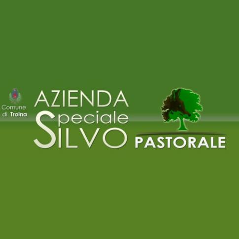 Troina: Azienda speciale silvo-pastorale